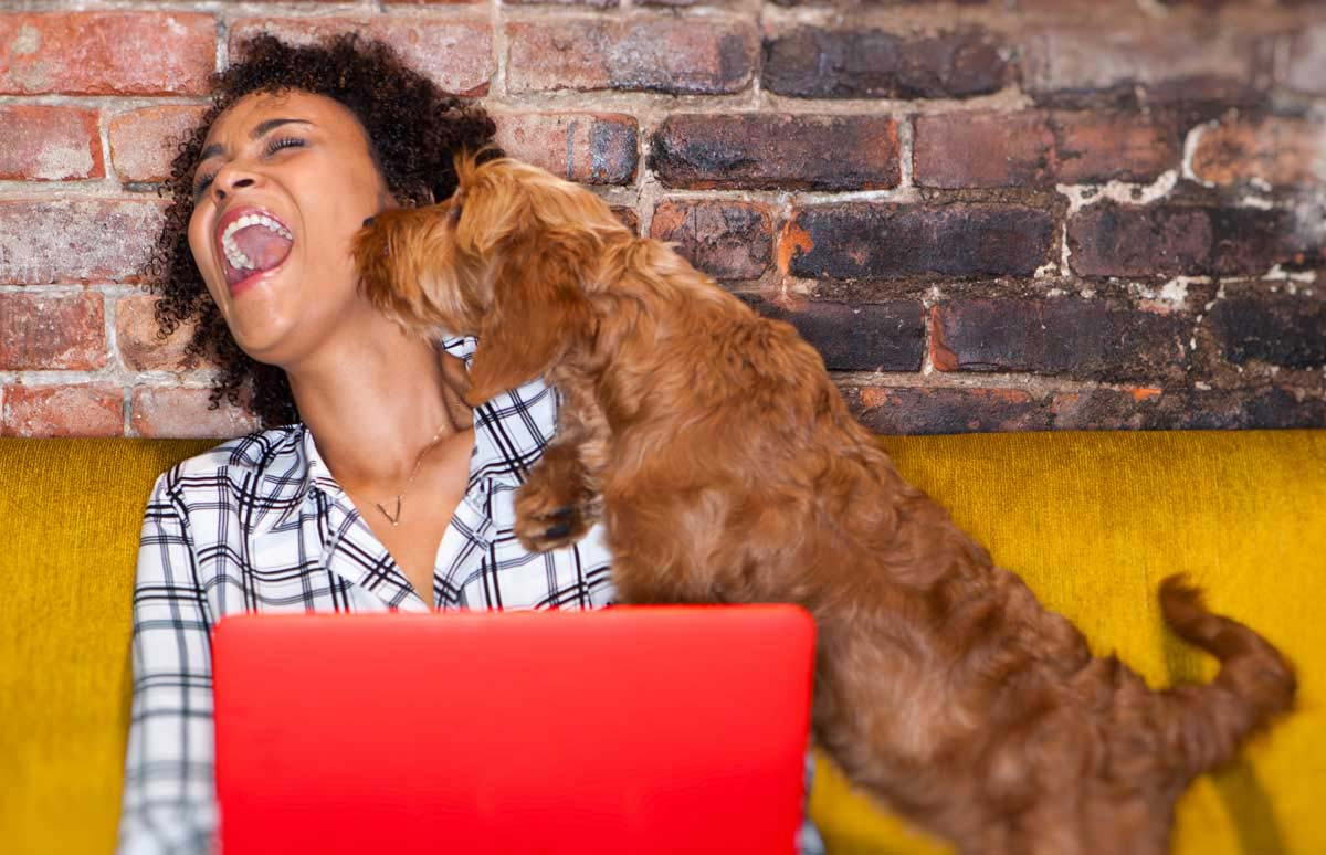 A dog owner and her best friend purchasing a memail address together.